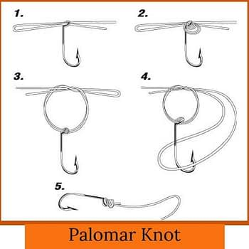 Palomar Knot how to tie