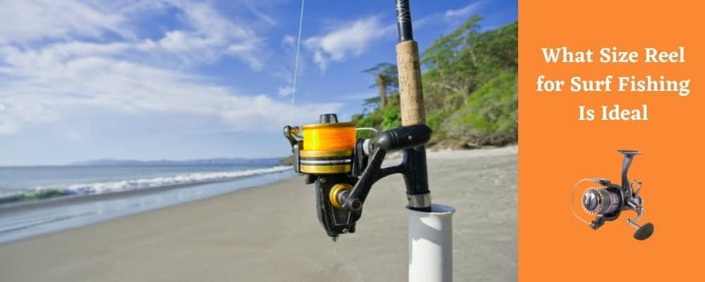 Ideal Reel Size for Surf Fishing
