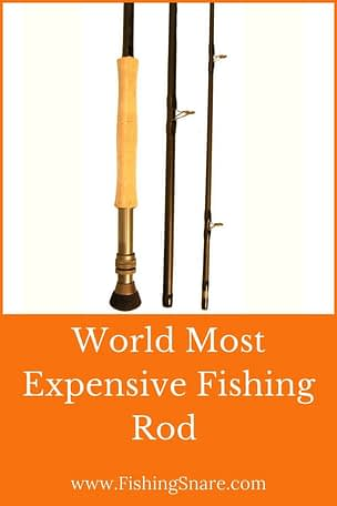 World Most expensive fishing rod