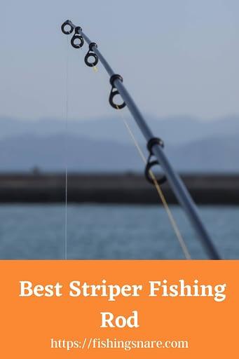 Best Striper Fishing Rod