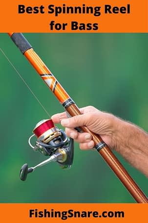 spinning reel for bass