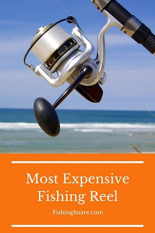 Expensive Fishing Reel